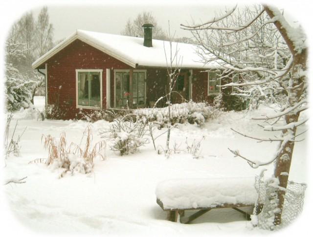 gott_om_snö